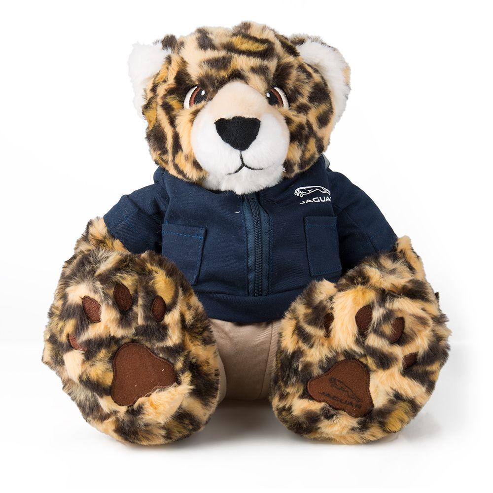 Teddy Bear Cub